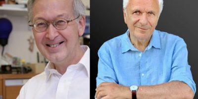 Queen Mary University of London professors awarded prestigious medals by the Royal Society